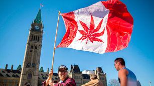 Diputados canadienses aprueban proyecto para legalizar la marihuana