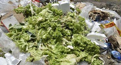 Proyecto de ley plantea reducir desperdicios de alimentos y donarlos a instituciones caritativas