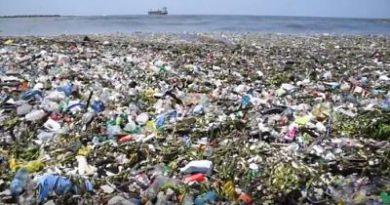 """""""Prevenir contaminación después de las lluvias está en manos de la gente"""""""