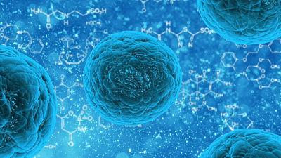 Una nueva epidemia podría acabar con 900 millones de personas