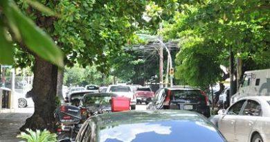 Algunos semáforos, señales y cableado del Distrito Nacional siguen amenazados por árboles