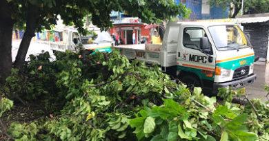 Dirección de Combate de Plagas Tropicales delMOPCasiste a cientos de personas en situación de vulnerabilidad tras remanentes dejados por Isaac.