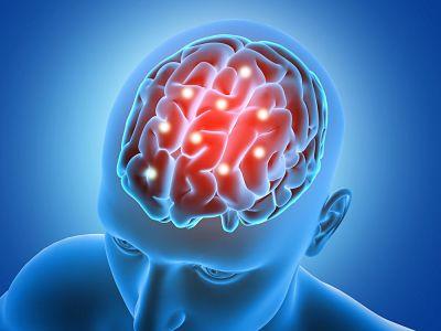 Grandes productos naturales para fortalecer el cerebro
