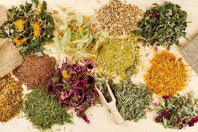 Hierbas medicinales que te ayudan a calmar el dolor de estómago