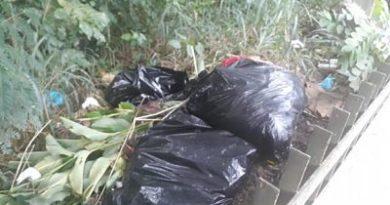 Policía Nacional investiga hallazgo de extremidades humanas en parque Mirador Norte