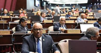 Ley Electoral divide diputados del PLD