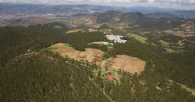TSA ordena a Medio Ambiente desalojar agricultores de Valle Nuevo