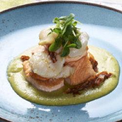 Lomo de salmón fresco con vieira asada sobre crema de judías verdes