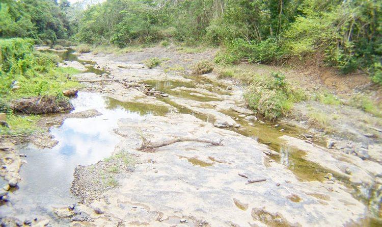 Turbas terroristas haitianas y la sequía golpean economía de RD