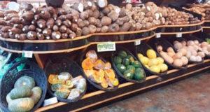 EFECTO DE LA SEQUÍA: Guineo, yuca, vegetales y otros productos agrícolas suben de precio por sequía