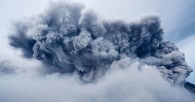 Identifican la causa de la mayor extinción masiva en la historia de la Tierra