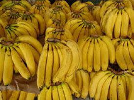 ATENCIÓN: Si eres fanático del plátano, acá tienen 10 cosas que seguro desconocías.