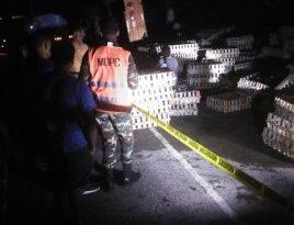 Conductor de camión cargado de Pollos pierde control y se vuelca, está herido