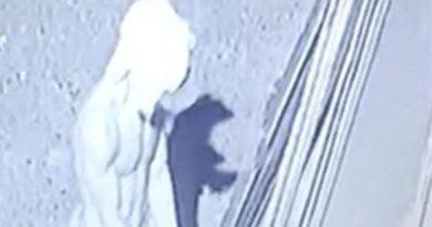 EFECTO KODAK Hombre queda grabado intentando penetrar un vehículo en SFM