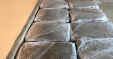 ATENCIÓN DICAN NO ESTA JUGANDO ; Ocupa más de 40 libras de marihuana en una vivienda