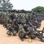 ALERTA : Atentado suicida de Boko Haram en Nigeria: al menos 30 muertos y 42 heridos