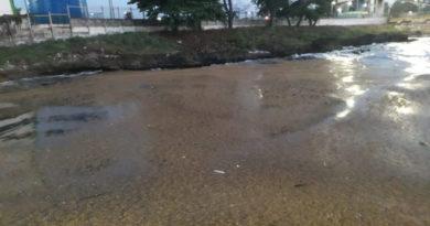 ATENCIÓN: Sargazos sacan plantas Itabo por varias horas; invaden litoral