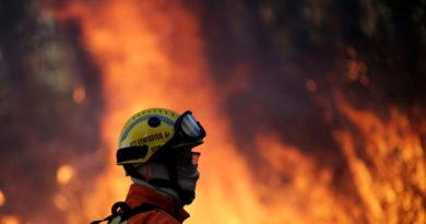 """""""Crimen ambiental"""": la Amazonía brasileña sufre la devastación de 16 días de incendios forestales"""