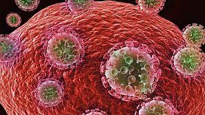 ATENCION : Los heterociclos poliazufre-nitrógeno podrían tener una actividad alta y selectiva contra el virus del HIV.