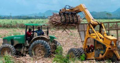 """Azucareros piden proteger a productores locales de importaciones """"ilícitas"""""""