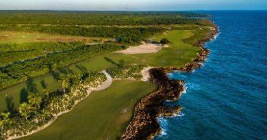 Bahia Principe siembra más de 15.000 árboles y plantas autóctonas en México y RD