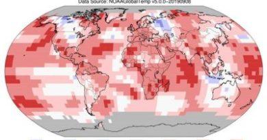 Este verano dejó temperaturas que siembran preocupación en la Tierra