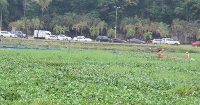 Cerrarán este sábado en la mañana el puente flotante sobre el río Ozama para liberación de desechos