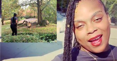 Buscan una mujer que desafió y se burló de un león en el zoológico de El Bronx