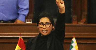"""El Senado de Bolivia abordará este miércoles convocatoria """"inmediata"""" a elecciones y abrogación del decreto que exime a los militares"""
