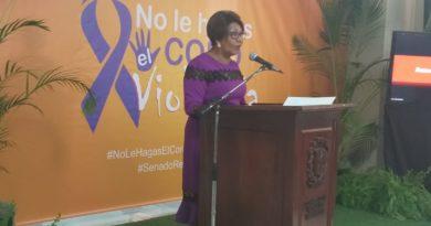 Solicitan a la Cámara Baja aprobar proyecto de ley sobre violencia contra la mujer