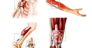 ATENCIÓN: Tratamiento de lesión de tejido blando subaguda