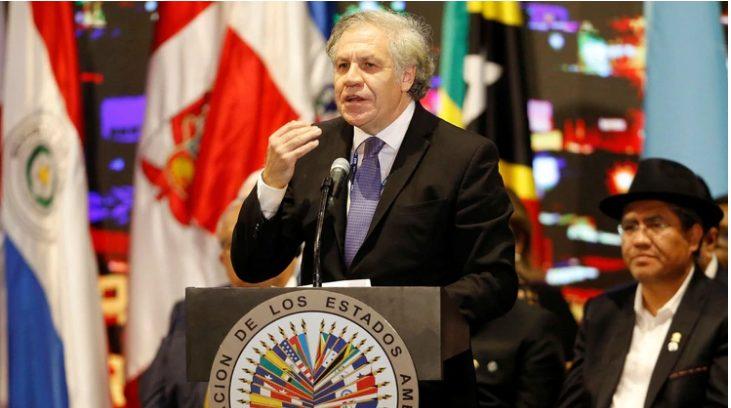 """ATENCIÓN :La OEA halló """"irregularidades muy graves"""" en las elecciones de Bolivia y exigió repetir los comicios"""