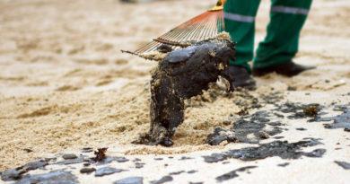Aparecen nuevas manchas de petróleo en la costa noroeste de Brasil