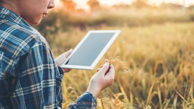 La venta de PCs y tabletas cerrará con avances en 2019