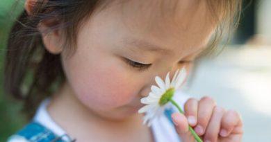 Hiperosmia, la excesiva sensibilidad a los olores