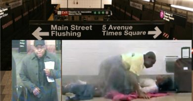 El NYPD busca pareja grabada teniendo sexo en concurridas estaciones de trenes de Manhattan