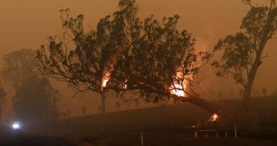 Se agravan los daños por incendios en Australia y aumentan críticas al primer ministro