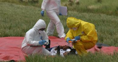 ATENCIÓN:El número de muertos por el coronavirus ya supera los 630