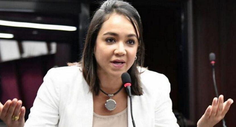 Faride Raful; Los candidatos del PRM no tenemos recursos económicos, estamos desangrados