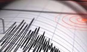 Un sismo de magnitud 5,0 sacude la costa suroeste de Puerto Rico