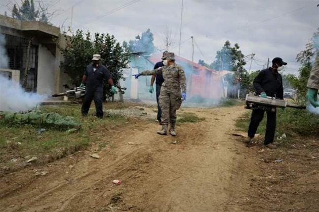 Fuerza Aérea realiza jornada de fumigación en sectores de San Isidro