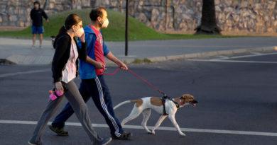 Chile es el primer país en aplicar un carnet de covid-19: ¿cómo funciona?