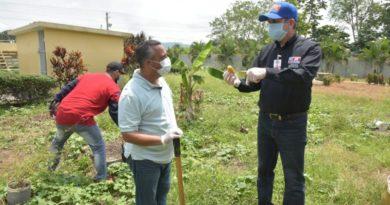 Director de liceo en Bonao intensifica cultivo de alimentos con huertos escolares