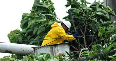 EDE Este inicia poda árboles previo temporada ciclónica; obligará suspensión del servicio