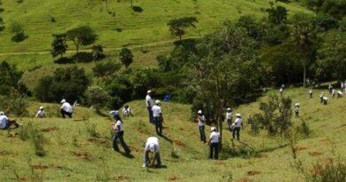 Porductor alerta a ganaderos prepararse frente a la sequía