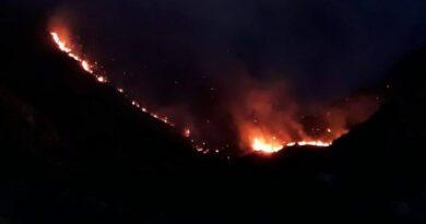 Se registra incendio forestal en Constanza