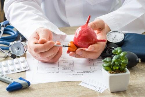 Alimentos que ayudan a desinflamar la próstata