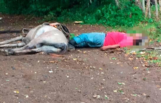 Isaías cobra primer muerto; un agricultor y su caballo terminan electrocutados