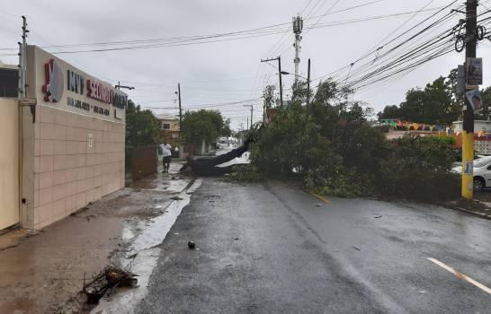 Tormenta Laura anega casas, calles y derriba árboles en el Gran Santo Domingo