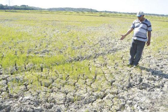 Durante décadas las comunidades de Najayo Arriba, Semilla y La Cruz junto a otras comunidades